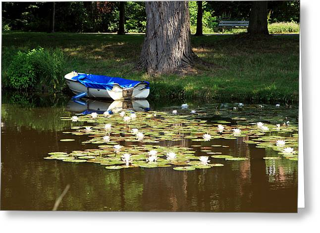 White River Scene Photographs Greeting Cards - Water Lilies Greeting Card by Aidan Moran