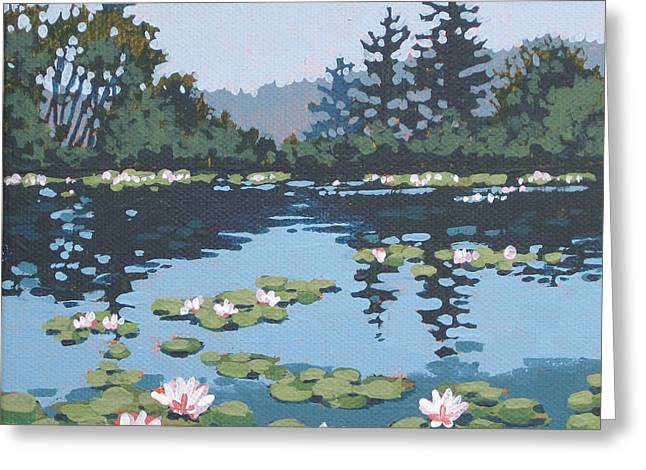 Aquatic Greeting Cards - Water Lilly Morning Greeting Card by Dorothy Jenson