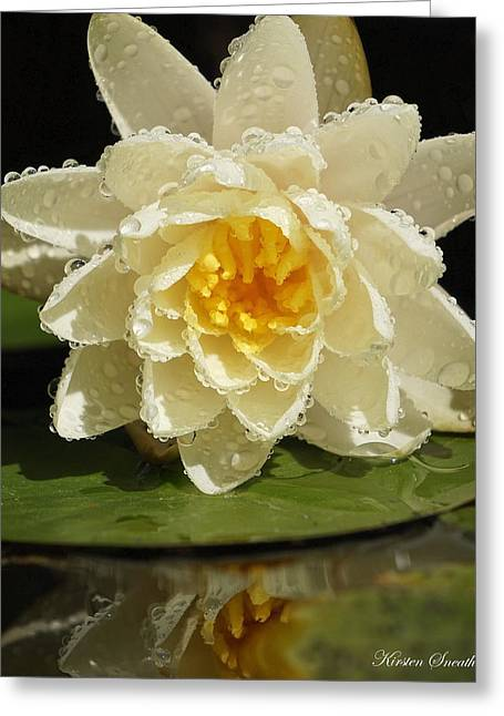 Greeting Cards - Water Lily Greeting Card by Kirsten Sneath