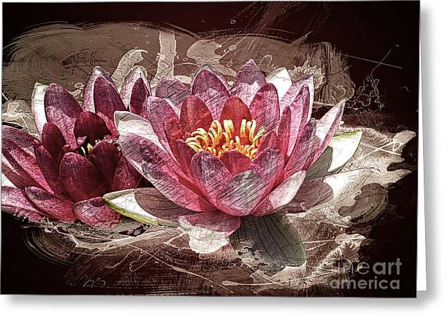 Water Lilly Digital Greeting Cards - Water Lily Greeting Card by Methune Hively