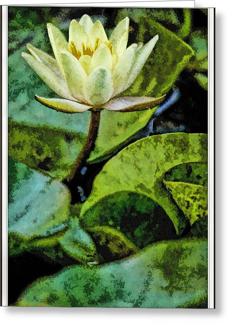 Paint Photograph Greeting Cards - Water Lily Painted Greeting Card by Geraldine Scull