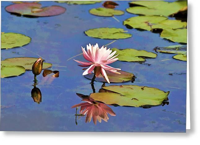 Floral Digital Art Digital Art Greeting Cards - Water Lily Painting Greeting Card by Geraldine Scull