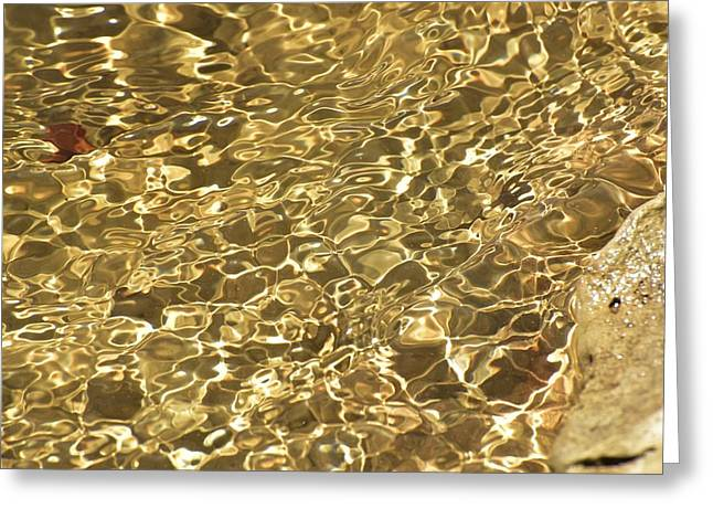 Reflections Of Sun In Water Greeting Cards - Water Pond Reflection Greeting Card by Linda Brody
