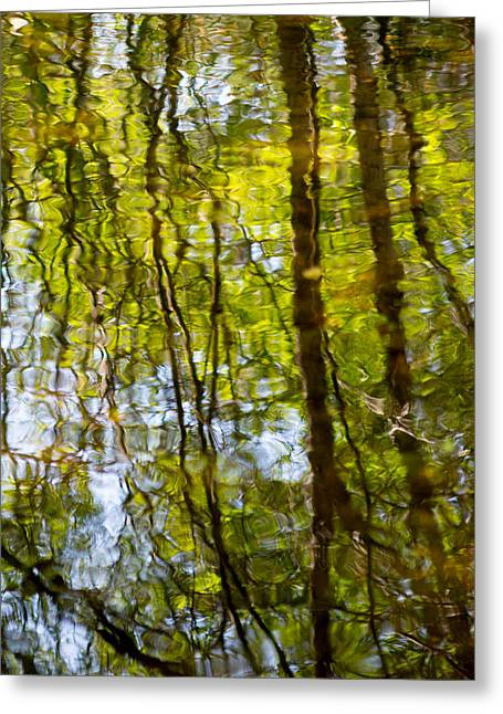 Green Abstract Greeting Cards - Water Ripples 1 Greeting Card by Rebecca Cozart