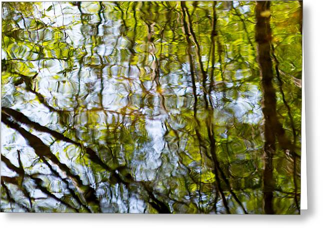 Green Abstract Photographs Greeting Cards - Water Ripples 2 Greeting Card by Rebecca Cozart