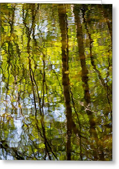 Green Abstract Photographs Greeting Cards - Water Ripples 3 Greeting Card by Rebecca Cozart