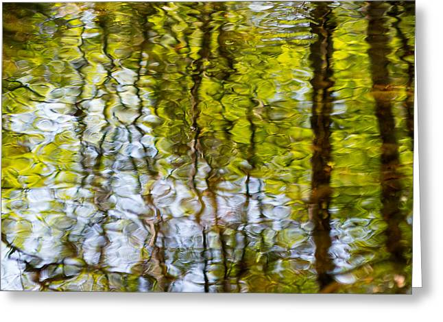 Green Abstract Photographs Greeting Cards - Water Ripples 4 Greeting Card by Rebecca Cozart