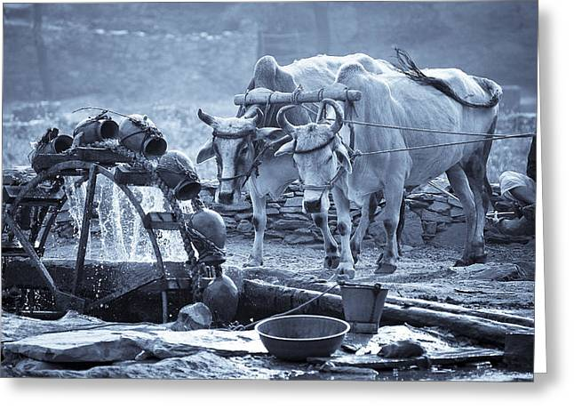 Devi Greeting Cards - Water Wheel India. Greeting Card by Tim Booth