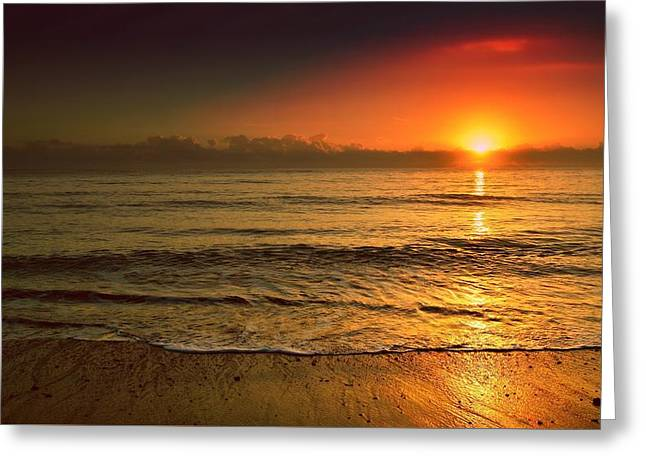 Beach Photography Greeting Cards - Water World Sunset Greeting Card by Ingrid Zagers