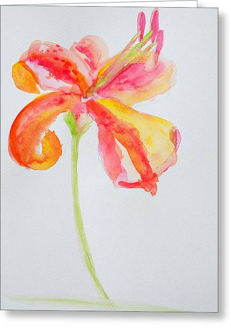 Delicate Drawings Greeting Cards - Watercolor Flower Oriental Lily Greeting Card by Patricia Awapara