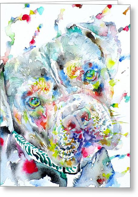 Puppies Paintings Greeting Cards - Watercolor Pit Bull.2 Greeting Card by Fabrizio Cassetta