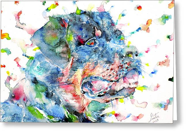Rottweiler Dog Greeting Cards - Watercolor Rottweiler Greeting Card by Fabrizio Cassetta