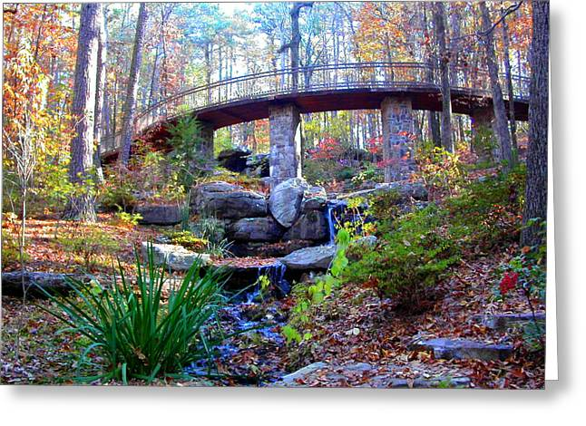 Waterfall And A Bridge In The Fall Greeting Card by Anne Cameron Cutri