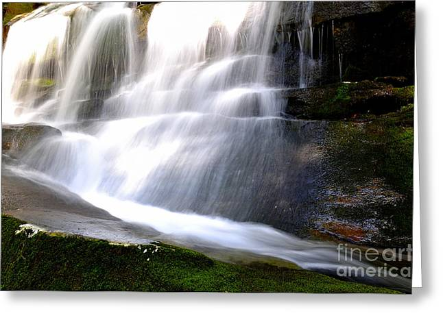 Nicholas Greeting Cards - Waterfall and Moss Greeting Card by Thomas R Fletcher
