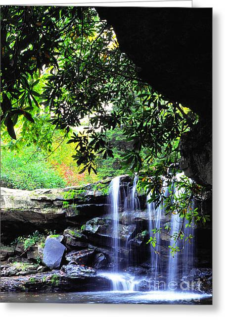 Allegheny Greeting Cards - Waterfall and Rhododendron Greeting Card by Thomas R Fletcher