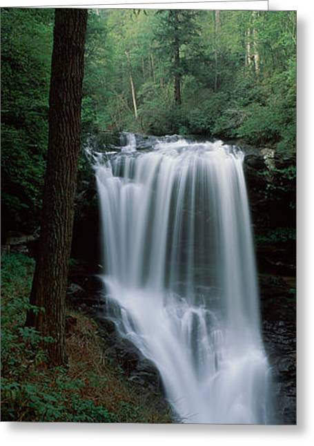 Nantahala Forest Greeting Cards - Waterfall In A Forest, Dry Falls Greeting Card by Panoramic Images