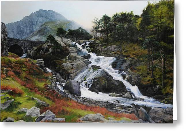 Waterfall In February. Greeting Card by Harry Robertson