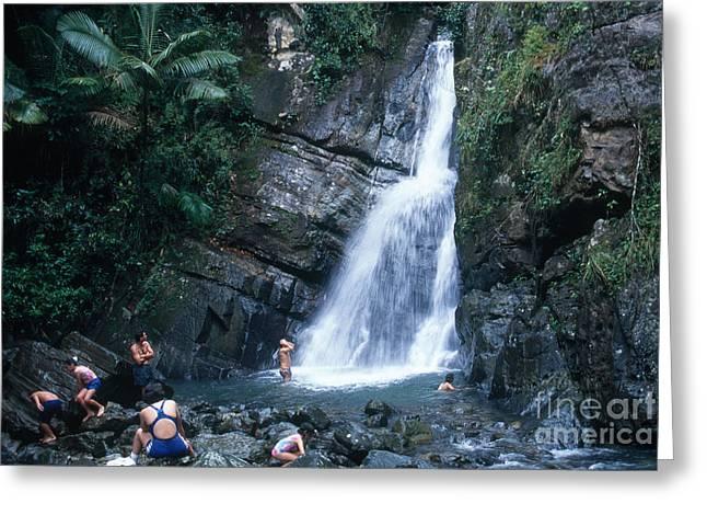 El Yunque Greeting Cards - Waterfall In Puerto Rico Greeting Card by John Kaprielian
