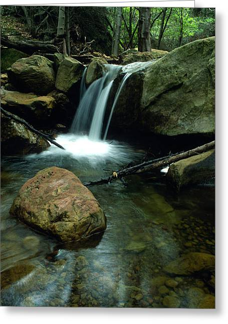 Landscape Framed Prints Greeting Cards - Waterfall in the Woods Greeting Card by Kathy Yates