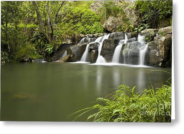 Water Flowing Greeting Cards - Waterfall Landscape Greeting Card by Henning De Beer