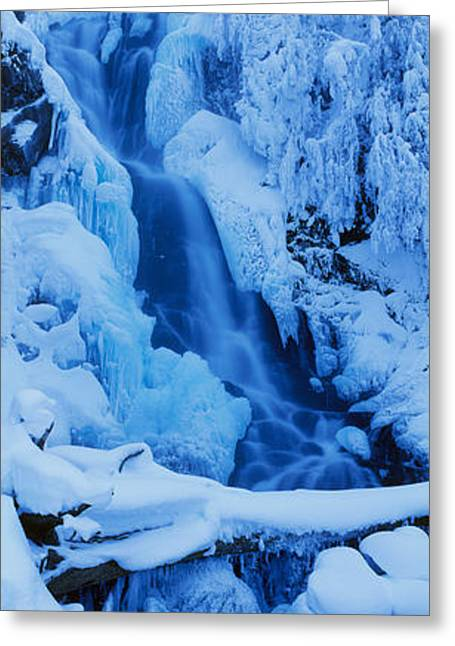 Conifer Tree Greeting Cards - Waterfall, Manning Park, British Greeting Card by Panoramic Images