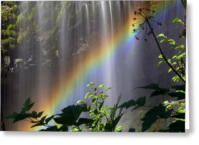 Waterfall Rainbow Greeting Card by Marty Koch