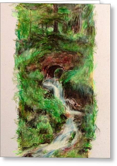 Canadian Drawings Drawings Greeting Cards - Waterfall Greeting Card by Victoria General