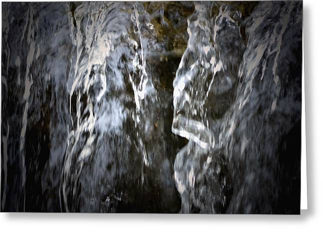Stream Digital Art Greeting Cards - Waterfalls - Lincoln Park Zoo - Detail Greeting Card by Richard Andrews