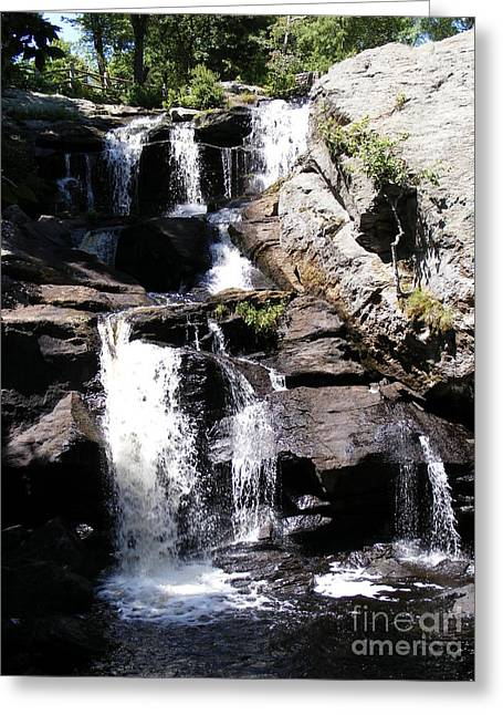 Best Sellers -  - Devils Den Greeting Cards - Waterfalls of Devils Den Greeting Card by Margie Avellino