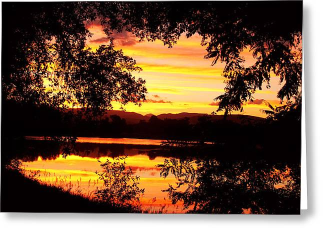 Gold Stock Greeting Cards - Waterfront Spectacular Sunset Greeting Card by James BO  Insogna