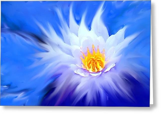 Waterlillies Transformed Greeting Card by Ian  MacDonald