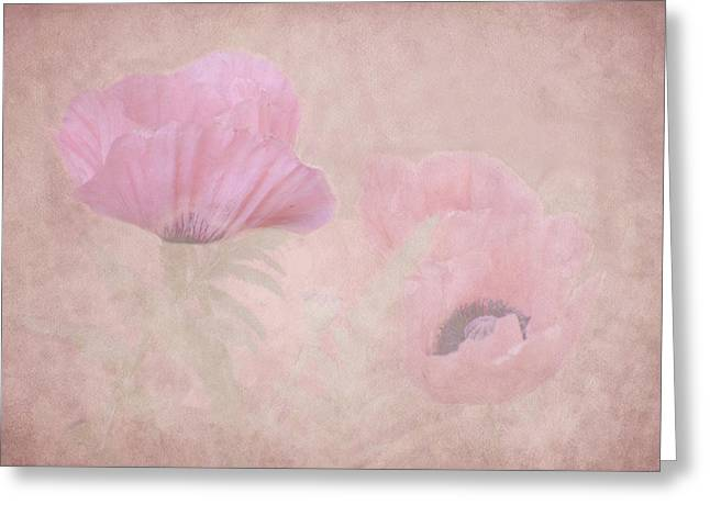 Watermelon Greeting Cards - Watermelon Poppies Greeting Card by Diane Schuster