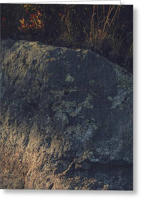 Impressionist Greeting Cards - WATERS EDGE course weave 5.3 Greeting Card by Peter Garland