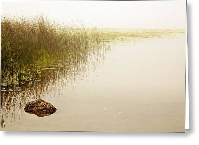 Waterscape Greeting Card by Barbara Smith