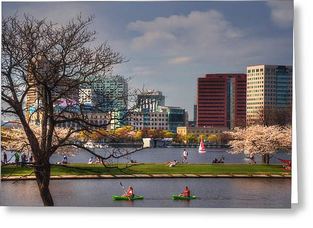 Charles River Greeting Cards - Watersports on the Charles River-Boston Greeting Card by Joann Vitali