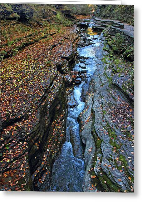 Watkins Glen Abstract Greeting Card by Jessica Jenney
