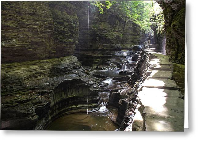 Finger Lakes Trail.cavern Cascade Greeting Cards - Watkins Glen Droplet Greeting Card by Melanie Bellis