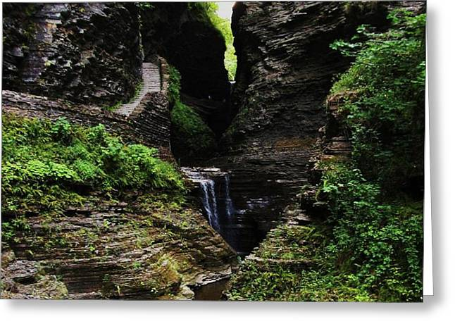 Watkins Glen Greeting Card by InTheSane DotCom