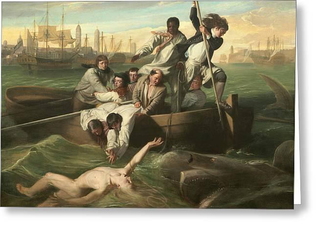 Watson And The Shark Greeting Card by John Singleton Copley