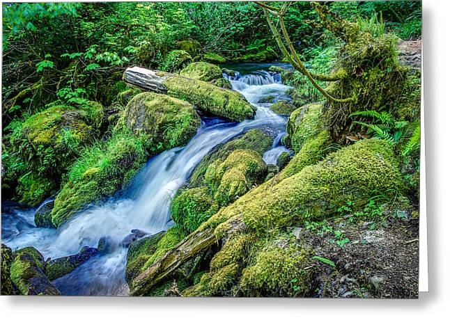 Watson Greeting Cards - Watson Creek Falls Oregon Greeting Card by Scott McGuire