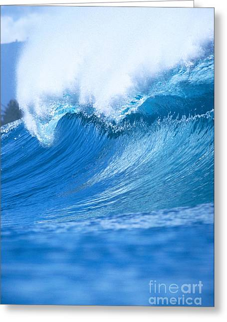 Backlit Greeting Cards - Wave With Whitewash Greeting Card by Vince Cavataio - Printscapes