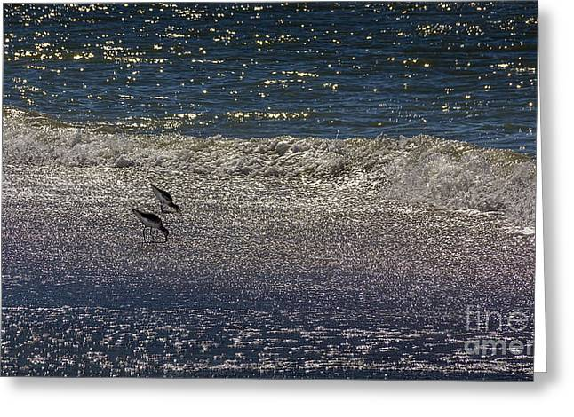 Waves And Sparkling Sand Greeting Card by Marvin Spates