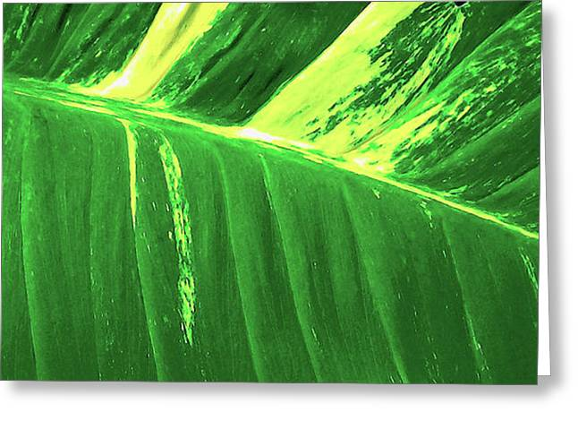 Waves Of Green Greeting Card by James Temple