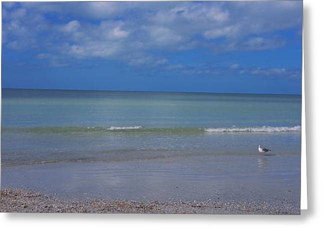 Siesta Key Greeting Cards - Waves On The Beach, Crescent Beach Greeting Card by Panoramic Images