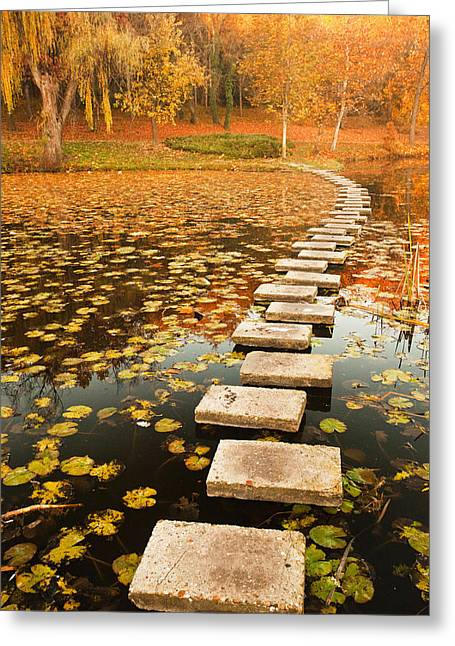 Ruse Greeting Cards - Way in the Lake Greeting Card by Evgeni Dinev