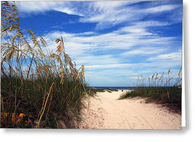 Plants Greeting Cards - Way out to The Beach Greeting Card by Susanne Van Hulst