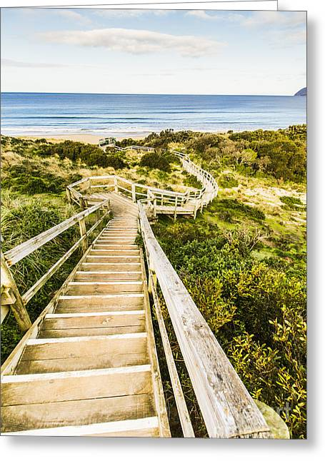 Way To Neck Beach Greeting Card by Jorgo Photography - Wall Art Gallery