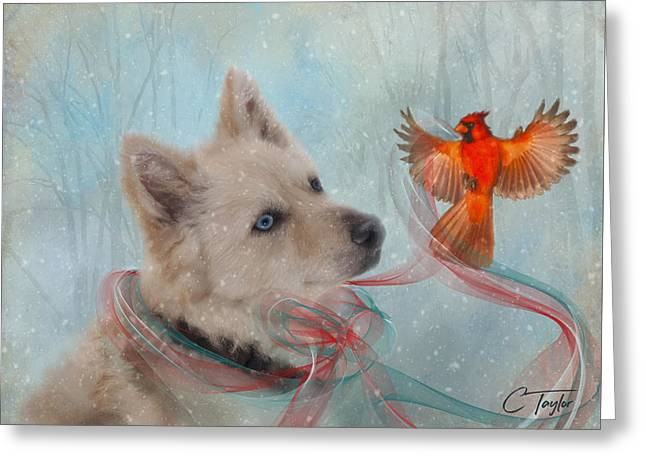 We Can All Get Along Greeting Card by Colleen Taylor