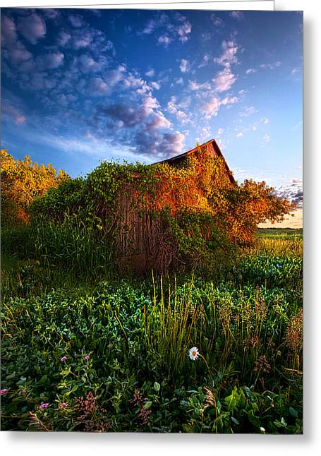 Country Life Greeting Cards - We Take No Note of Time Greeting Card by Phil Koch