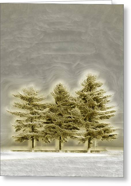 We Three Trees Greeting Card by Bill Tiepelman